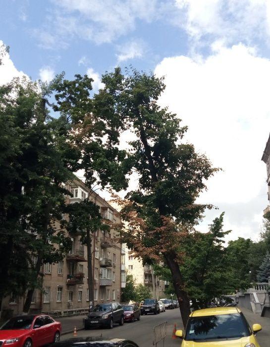 Сдам долгосрочно 2 к, г. Киев                               в р-не Центр возле м. <strong>Университет</strong>                                  фото